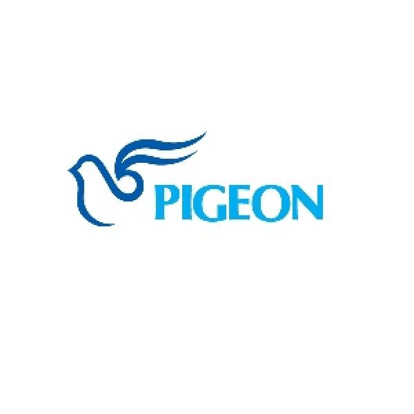 Pigeon, Korea